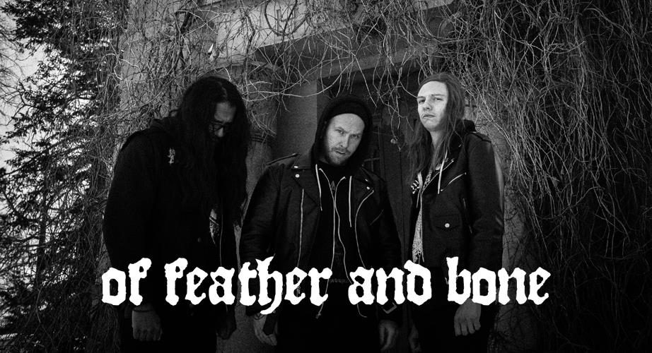 Of Feather and Bone